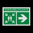 Pictogram E007 - Verzamelplaats rechts