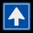 Verkeersbord RVV C03 - Eenrichtingsweg