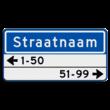 Straatnaambord 10 karakters 600x300 mm + 2 regelig huisnummers NEN 1772
