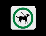 TBH Honden aangelijnd toegestaan 119x109mm - klasse 3