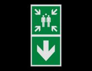 Haaks bord E007 - Verzamelplaats verwijzing