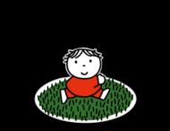 Dick Bruna - Silhouetbord speelveld - grasveld