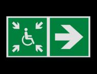 Haaks bord E024 - Tijdelijke verzamelplaats voor evacuatie verwijzing
