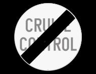 Verkeersbord SB250 C49 - Einde van het verbod opgelegd door het verkeersbord C48
