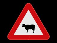 Verkeersbord SB250 A29 - Overstekend vee