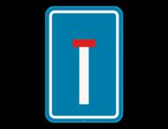 Verkeersbord SB250 F45 - Doodlopende weg