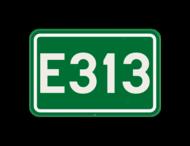Verkeersbord SB250 F23c - Nummer van een internationale weg