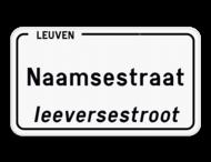 Straatnaambord België 4:2 + Stad/Gemeente met dialect
