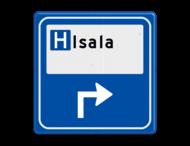 Verkeersbord - Parkeerplaatsverwijzing Ziekenhuis
