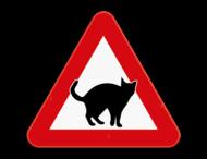 Verkeersbord SB250 - opgelet overstekende katten