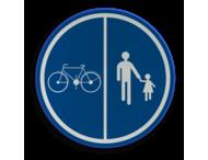 Verkeersbord België D09 - Deel van de weg voorbehouden voor voetgangers en van fietsen
