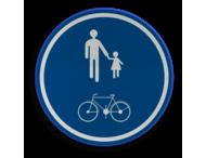 Verkeersbord België D10 - Deel van de openbare weg voorbehouden voor het verkeer van voetgangers en fietsers.