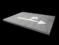 Markering pijlfiguratie 2 richtingen - wegenverf