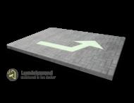 Markering luminiserende pijlfiguratie 1 richting - wegenverf