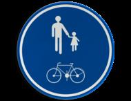 Verkeersbord België D10 - Deel van de openbare weg voorbehouden voor het verkeer van voetgangers en fietsers