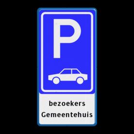 Verkeersbord RVV E08 + tekstregels - Parkeerplaats auto's