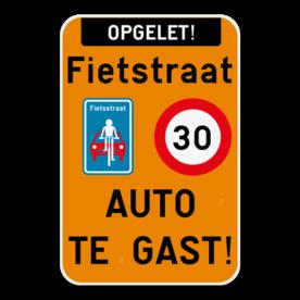 Informatiebord - fietsstraat - auto te gast!