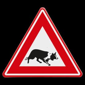 Verkeersbord - waarschuwing overstekende Bordercollie