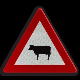 Verkeersbord A29: Doortocht van vee Verkeersbord België A29 - Doortocht voor vee A29 pas op, let op, J28, koeien, schapen