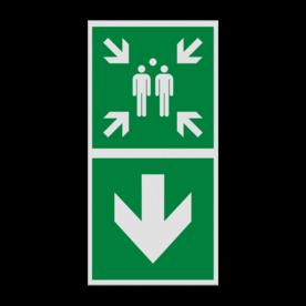 Product E007 - Verzamelplaats naar beneden Pictogram E007 - Verzamelplaats naar beneden Vlucht, Vluchtroute, verzamelplaats, verzamelbord, verzamelen, calamiteiten, BHV, verzamelpunt, Eigen Terrein, BT34, vluchtroutebord, reddingsmiddelbord, evacuatie, evaluatiebord