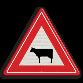 Verkeersbord Vooraanduiding oversteken vee Verkeersbord RVV J28 - Vooraanduiding oversteken vee J28 let op, pas op, koeien, dieren, J28, overstekende koeien