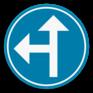 Verkeersbord D3a - Verplicht één van de pijlen te volgen.