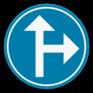 Verkeersbord D3b - Verplicht één van de pijlen te volgen.