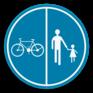 Verkeersbord D9a - Deel van de weg voorbehouden voor voetgangers en fietsers.