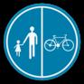 Verkeersbord D9b - Deel van de weg voorbehouden voor voetgangers en fietsers.
