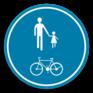 Verkeersbord D10 - Deel van de weg voorbehouden voor voetgangers en fietsers.