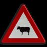 Verkeersbord A29 - Doortocht van vee