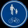 Verkeersbord D10 - Deel van de weg voorbehouden voor voetgangers en fietsen