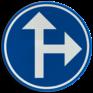 Verkeersbord D03b - Verplichting één van de  pijlen te volgen
