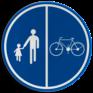 Verkeersbord D09b - Deel van de weg voorbehouden voor voetgangers en fietsen