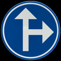 Verkeersbord D03b: Verplichting één van de door de pijlen aangeduide richtingen te volgen (hier rechtdoor en rechts) Verkeersbord België D3b - Verplichting één van de door de pijlen aangeduide richtingen te volgen D3b D06r, rijrichting, bord, richting volgen