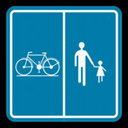 Verkeersbord F99b: Dit verkeersbord geeft aan dat deze weg of deel van de openbare weg voorbehouden is voor het verkeer van voetgangers, fietsers, ruiters en bestuurders van speed pedelecs met aanduiding van het deel van de weg dat bestemd is voor de verschillende categorieën van weggebruikers. Verkeersbord SB250 F99b F99b