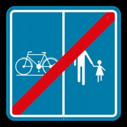 Verkeersbord F101b: Dit verkeersbord geeft aan vanaf hier deze weg of deel van de openbare weg niet meer voorbehouden is voor het verkeer van voetgangers, fietsers, ruiters en bestuurders van speed pedelecs met aanduiding van het deel van de weg dat bestemd is voor de verschillende categorieën van weggebruikers. Verkeersbord SB250 F101b F101b