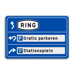 Parkeerroutebord 2 richtingen met aanpasbare tekst pijlen