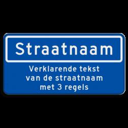 Straatnaambord 10 karakters 600x300mm + 3 regelige ondertekst NEN 1772